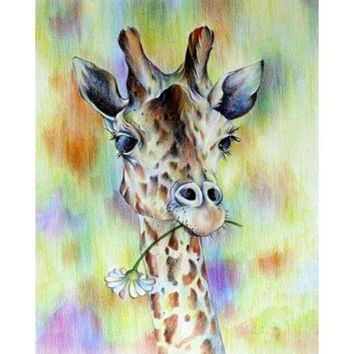 Zsiráf festés számok alapján kreatív készlet