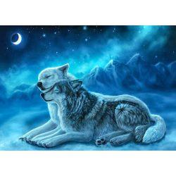 Farkasok festés számok alapján kreatív készlet kerettel 40x50