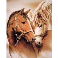 Ló szerelem festés számok alapján kreatív készlet kerettel 40×50
