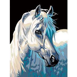 Fehér ló festés számok alapján kreatív készlet kerettel